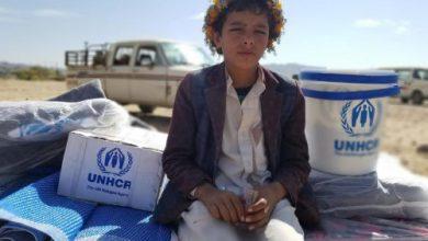 صورة مفوضية اللاجئين: 2 مليون يمني يعانون الأمرين للتأقلم مع النزوح