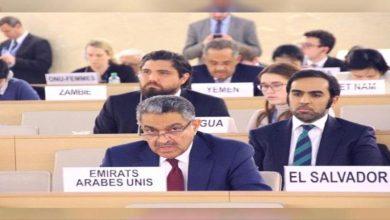 صورة الإمارات تشدد على ضرورة تضافر الجهود الدولية لمكافحة الإرهاب والتطرف