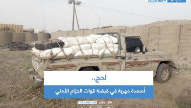 صورة لحج .. أسمدة مهربة في قبضة قوات الحزام الأمني