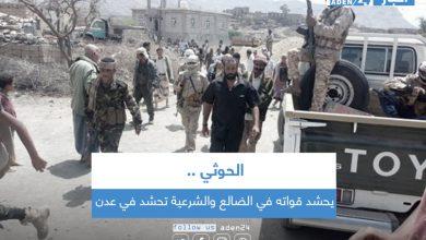 صورة الحوثي يحشد قواته في الضالع والشرعية تحشد في عدن
