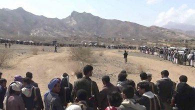 صورة مواجهات قبلية دامية في محافظة البيضاء اليمنية