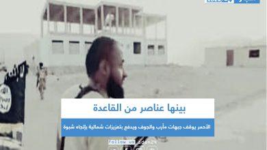 صورة بينها عناصر من القاعدة .. الأحمر يوقف جبهات مأرب والجوف ويدفع بتعزيزات شمالية بإتجاه شبوة