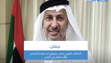 صورة قرقاش: التحالف العربي صلب وحيوي لاستعادة السلام والاستقرار في اليمن
