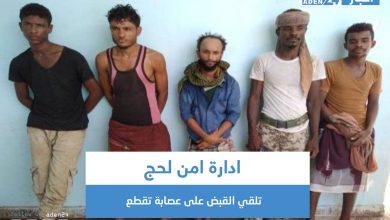 صورة ادارة امن لحج تلقي القبض على عصابة تقطع