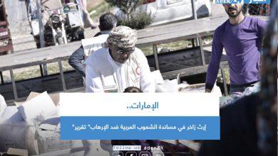 """صورة الإمارات.. إرث زاخر في مساندة الشعوب العربية ضد الإرهاب"""" تقرير"""""""
