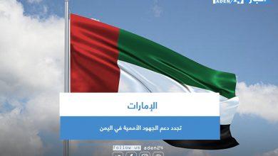 صورة الإمارات تجدد دعم الجهود الأممية في اليمن