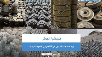 صورة ميليشيا الحوثي زرعت عشرات الحقول من الألغام في الحديدة اليمنية