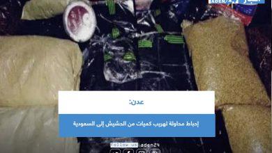 صورة عدن: إحباط محاولة تهريب كميات من الحشيش إلى السعودية