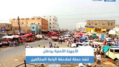 صورة الأجهزة الأمنية بردفان تنفذ حملة لملاحقة الباعة المخالفين