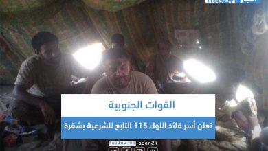 صورة القوات الجنوبية تعلن أسر قائد اللواء 115 التابع للشرعية بشقرة