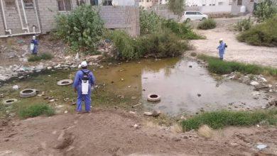 صورة برنامج مكافحة الملاريا يواصل حملات الرش في العاصمة عدن