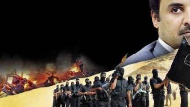 صورة الكشف عن تأسيس فرقة اغتيالات في المهرة بدعم قطري