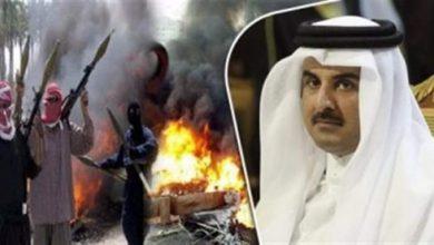 صورة صحيفة دولية: نشاط عسكري مدعوم من قطر لفرض واقع جديد في اليمن