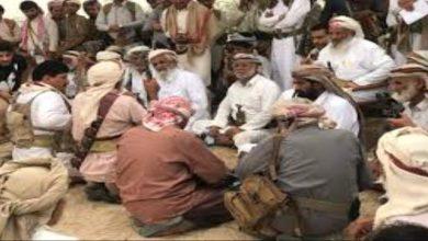 صورة في ظل هيمنة مليشيا الإخوان.. ترتيبات لإنشاء تكتل قبلي واسع في مأرب مناهض للمليشيات