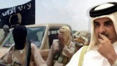 صورة صحيفة ألمانية تكشف تورط قطر بتمويل جمعيات الإخوان بـ 72 مليون يورو