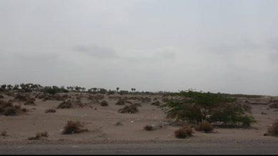 صورة الحديدة.. قصف حوثي على قرى ومزارع المواطنين في منطقة الجبلية بالتحيتا