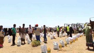 صورة الإمارات تغيث 1400 أسرة نازحة في الحديدة