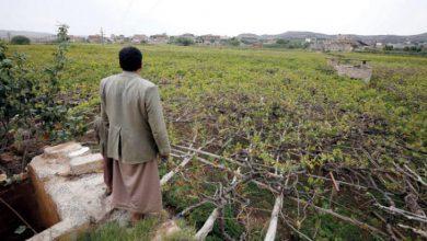 صورة مليشيا الحوثي تسخر عائدات الضرائب والجمارك لشراء العقارات