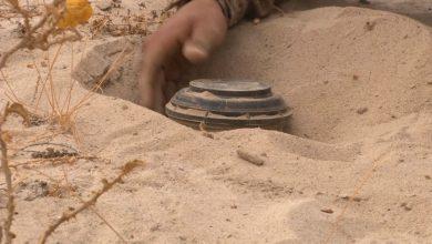 صورة البيضاء.. استشهاد وإصابة 3 مواطنين إثر انفجار لغم حوثي في الزاهر