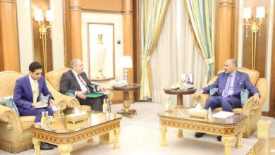 صورة الرئيس الزُبيدي يبحث مع السفير المصري تعزيز حماية باب المندب ومكافحة الإرهاب