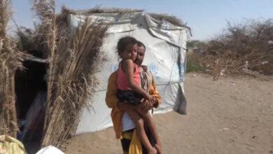 صورة هلال الإمارات يغيث أسرة يمنية نازحة جنوب الحديدة