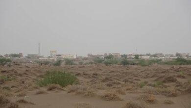 صورة #الحديدة.. مليشيا #الحوثي تستهدف القرى السكنية في #الجبلية