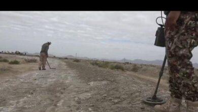 صورة الفرق الهندسية التابعة  لألوية #العمالقة تواصل حملة إزالة مخلفات #الحرب في #أبين