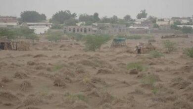 صورة مدفعية القوات المشتركة تدك أوكار وتحصينات مليشيا الحوثي في الحديدة