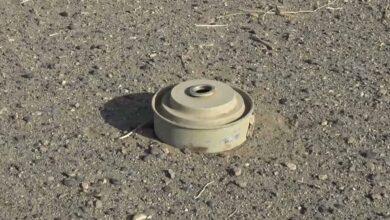 صورة شبوة.. إتلاف 8500 من الألغام الحوثية ومخلفات الحرب