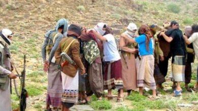 صورة القاعدة والحوثي .. تعاون وثيق وإرهاب عابر للحدود