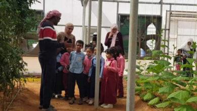 صورة إطلاق مبادرات لتشجير مدارس سقطرى