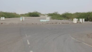 صورة قناصة الحوثي تفتح نيران أسلحتها صوب القرى والمزارع في #الفازة