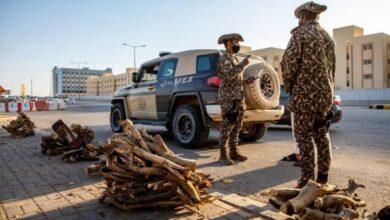 صورة السعودية.. ضبط 5 مخالفين لنظام البيئة في الرياض بينهم يمنيين