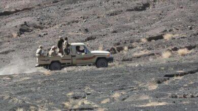 صورة خسائر بشرية لمليشيات #الحوثي في جبهة الحازمية بالبيضاء