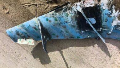 """صورة التحالف يعلن تدمير مسيرتين """"مفخختين"""" أطلقتهما مليشيا الحوثي باتجاه خميس مشيط"""