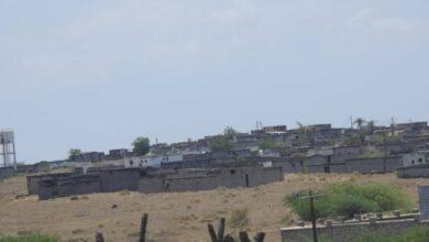 صورة مليشيا الحوثي تشن قصف عنيف على قرى الدريهمي جنوب الحديدة