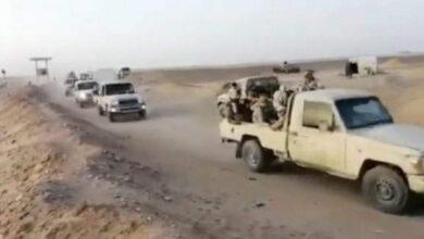 صورة في إطار التحضير لإشعال حرب جديدة.. مليشيا الإخوان تستدعي عناصرها إلى شقرة