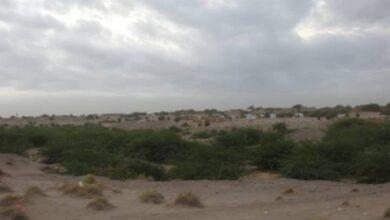صورة مليشيات #الحوثي تجدد استهداف قرى #الجبلية بالحديدة اليمنية