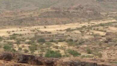صورة القوات الجنوبية توجه ضربات موجعة لمليشيا الحوثي في جبهة كرش