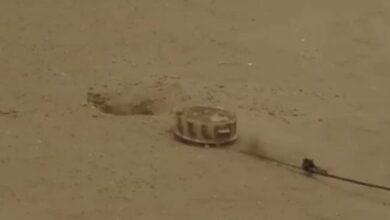 صورة القوات المشتركة تفكك شبكات ألغام حوثية في الحديدة اليمنية