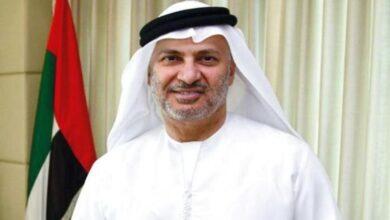 """صورة قرقاش لـ المتطاولين"""" على الإمارات: دولتنا مشغولة بمستقبلها"""