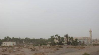 صورة قصف حوثي يطال الأعيان المدنية في الفازة والجبلية