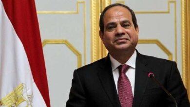 صورة الرئيس المصري يصادق على قانون فصل الإخوان من وظائفهم