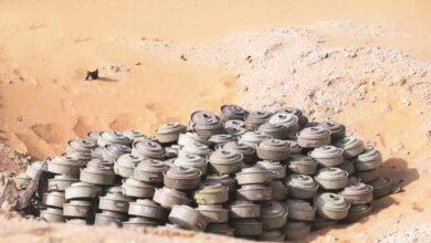 """صورة 100 قتيل حصيلة ضحايا ألغام """"الحوثيون"""" خلال النصف الأول من العام الجاري"""