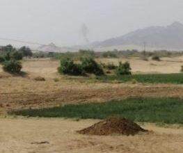 صورة قبائل شبوة تستعيد عدد من المواقع في بيحان وتكبد مليشيا الحوثي خسائر فادحة