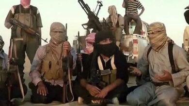 صورة مليشيا #الإخوان تستقبل عناصر إرهابية في #تعز اليمنية